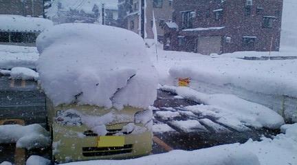 snow 2011.jpg